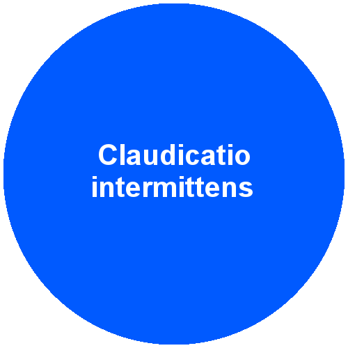 Claudicatio